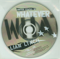 United States Of Whatever, Liam Lynch