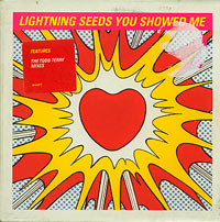 You Showed Me CD2, Lightning Seeds £1.50