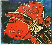 Fall Down, Toad The Wet Sprocket £1.50