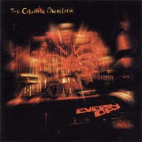 Cinematic Orchestra Every Day CD