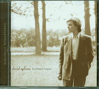 Brilliant Trees, David Sylvian