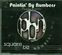 Paintin by Numbers Square Biz CDs